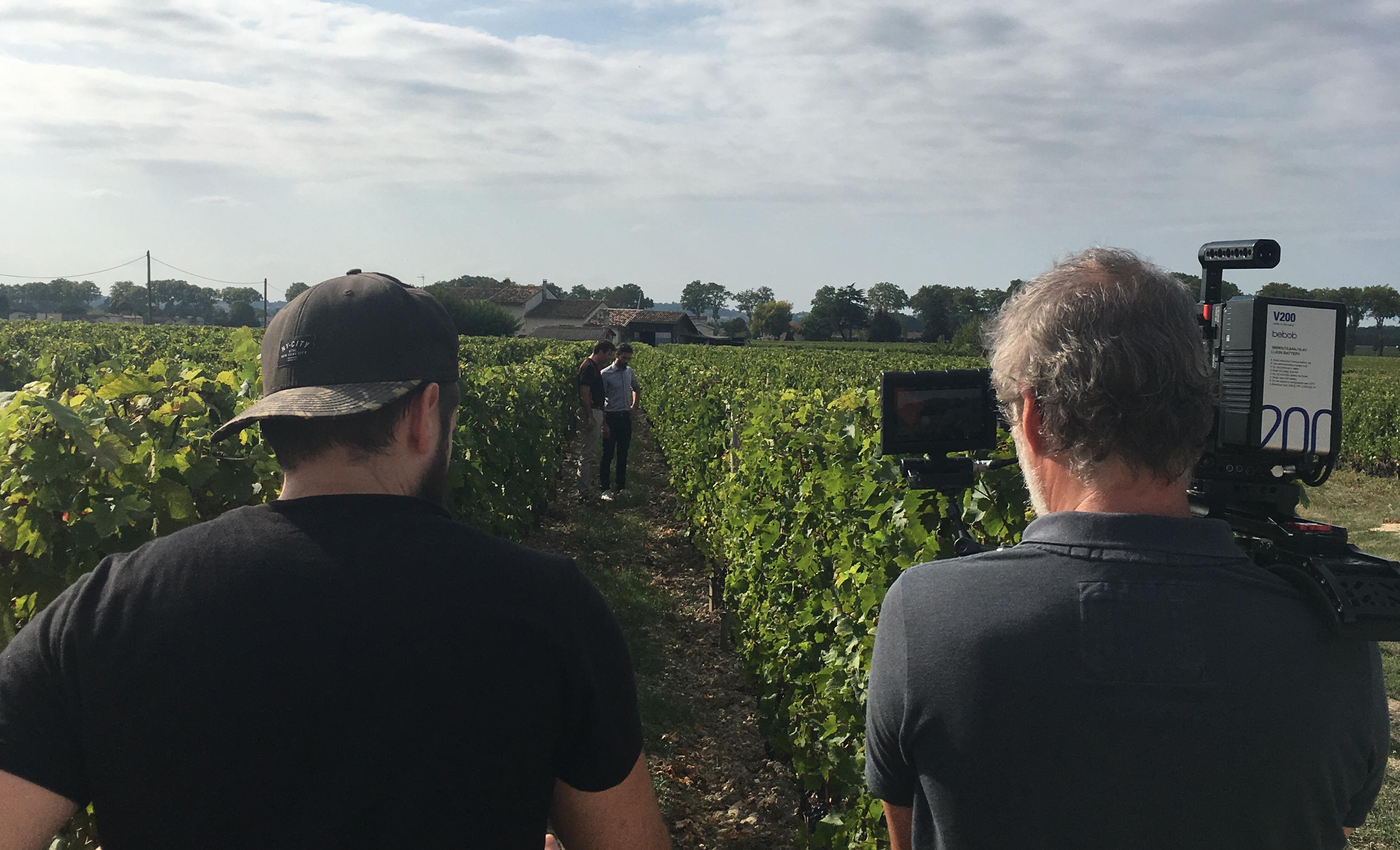cdiscount-tournage-vignes